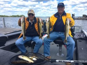 Full Stringer, Walleyes, Mille Lacs Lake,